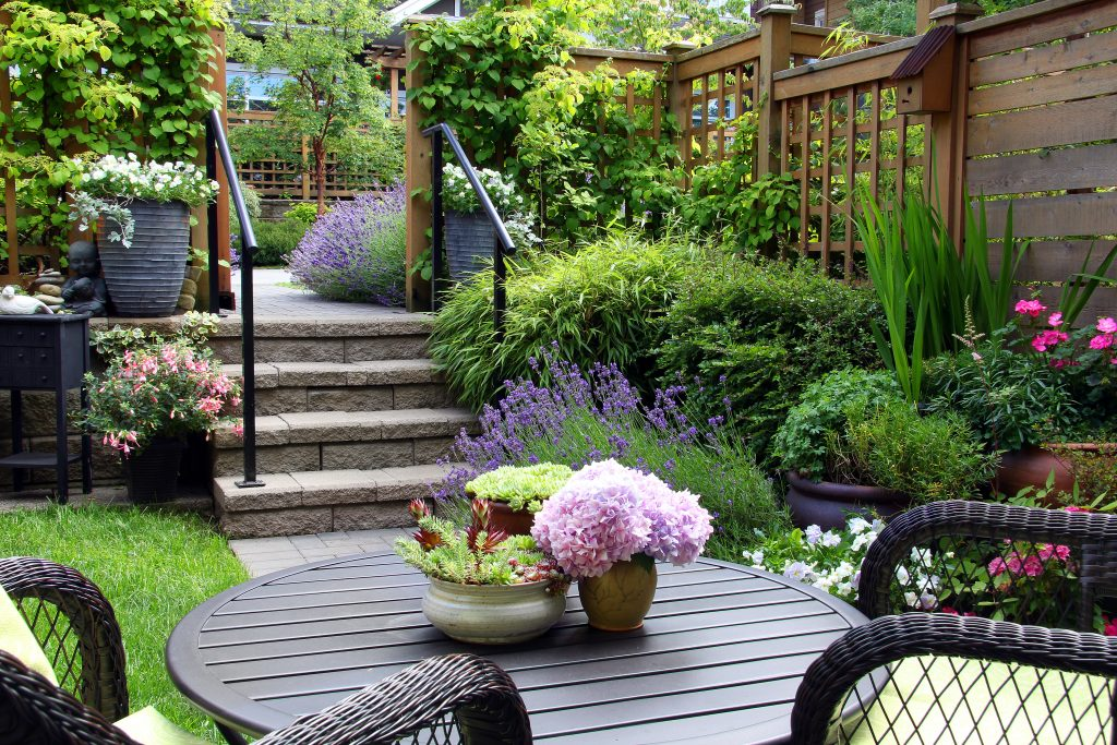 Small townhouse perennial summer garden