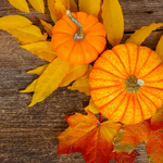 6 Wallet Friendly Decorating Tips For The Fall Season