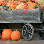 10 Easy Fall Decorating Ideas for Your Front Porch