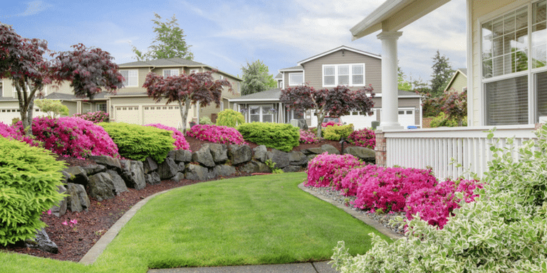 curb appeal-feature