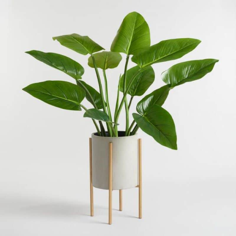 large-gray-planter-with-brass-copper-stand
